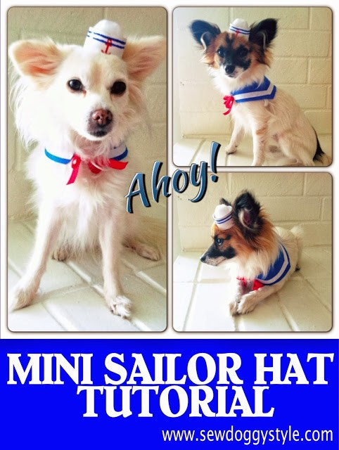 dog sailor outfit