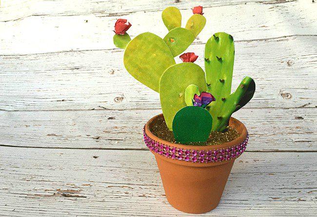photo-cactus-garden10